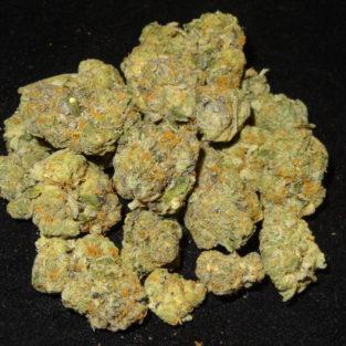 Buy Gelato 41 strain