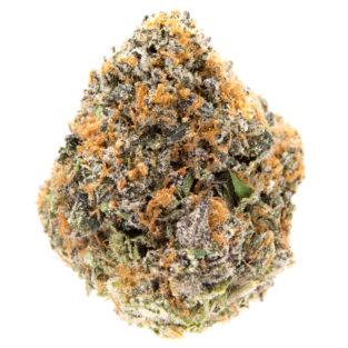 Buy Gushers strain online