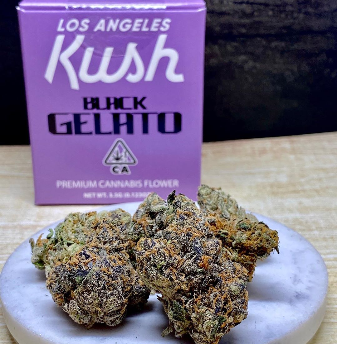 Buy Black Gelato strain