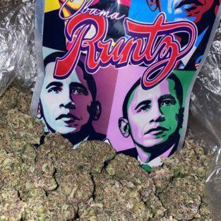 Buy Obama Runtz online